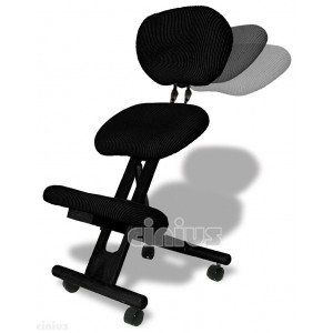 Professional ergonomic chair with back