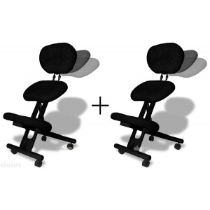 Pair of Professional ergonomic chairs with back