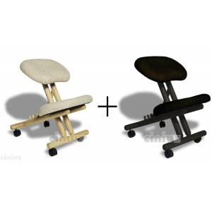 Pair of Professional ergonomic chairs without back