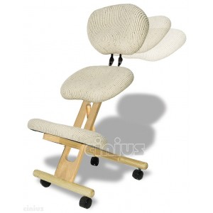 Professional ergonomic chair with back ASSEMBLED